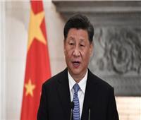 """رئيس الصين يقدر مساعدات الإمارات في مواجهة """"كورونا"""""""