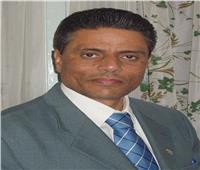اتحاد الجاليات المصرية بأوروبا ناعيا مبارك: لن ننسى أحد أبطال أكتوبر