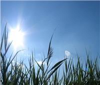 الأرصاد: غدا طقس دافئ نهارا على معظم الأنحاء والعظمى بالقاهرة 25