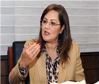 وزيرة التخطيط وممثلو «فايزر» يبحثون سبل دعم رؤية مصر 2030