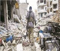 الحفاظ على الدولة السورية أولوية مصرية
