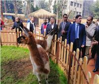 تفاصيل| «الزراعة»: اتفاق مصري- فرنسي لترميم كوبري إيفل المعلق بحديقة الحيوان