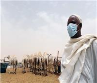 السنغال تسجل أول إصابة بفيروس كورونا