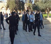 عشرات المستوطنين الإسرائيليين يقتحمون المسجد الأقصى بإشراف الاحتلال