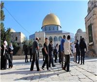 49 مستوطنًا إسرائيليًا يقتحمون المسجد الأقصى المبارك