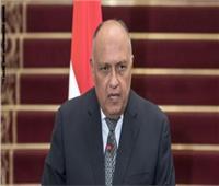 وزير الخارجية: نقدر مواقف أمير ودولة الكويت الداعمة لمصر