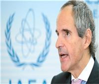 الطاقة الذرية: 15 دولة طلبت المساعدة لمواجهة فيروس كورونا