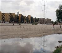 فيديو| بسبب كورونا .. المواطنون يمتنعون عن الذهاب لسوق السيارات بمدينة نصر
