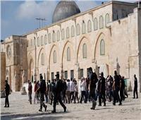 تزامنًا مع منع المصلين من دخوله.. مستوطنون إسرائيليون يقتحمون المسجد الأقصى