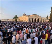 تعليق الصلاة في المسجد الأقصى