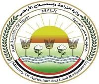 «الزراعة» تقرر سريان تراخيص كافة الأنشطة الزراعية والحيوانية بسبب «كورونا»