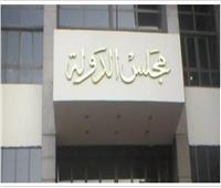 «حتى لا تدب الفوضى».. القضاء الإداري يرفض دعوى منع تدريس فقه المذاهب الأربعة