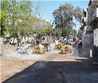 """قرى أبيس تبدأ تنفيذ مبادرة """"تطهير وتعقيم القرى والنجوع بالإسكندرية"""""""