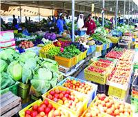 الإمارات تتبنى قانونًا ينظم المخزون الإستراتيجي للسلع الغذائية في أوقات الطوارئ