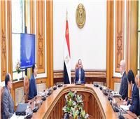 الرئيس يحسم مصير 3 مشروعات قومية كبرى.. أبرزها نقل الحكومة إلى العاصمة الإدارية