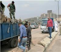 رفع أطنان من القمامة خلف مستشفى الشيخ زايد بمدينة نصر