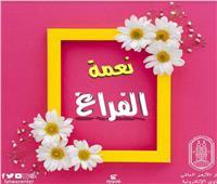 «الأزهر العالمي للفتوى» ينشر رسالة عن «نعمة الفراغ»