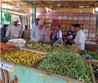 السكرتير العام المساعد بجنوب سيناء يتابع ضبط أسعار السلع بالأسواق