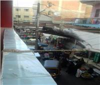 امسك مخالفة| زحام المواطنين في سوق قرية جصفا بالدقهلية