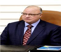 محافظ القاهرة يتابع أعمال النظافة أثناء توقيت الحظر