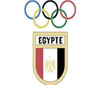 هشام حطب: الأولمبية أعدت خطة لتجهيز المنتخبات والمتأهلين للأولمبياد