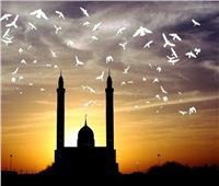 «شهيد يمشي على الأرض».. هكذا وصفه النبي فمن هو!