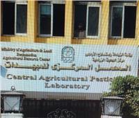 الزراعة: المركزي للمبيدات يشارك في تحليل الأغذية لتلبية الطلبات المتزايدة على الصادرات المصرية