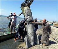 افتتاح موسم الصيد ببحيرة البردويل 5 يونيو المقبل
