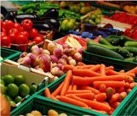 الحكومة: المنتجات الزراعية شهدت طلباً دولياً متزايداً رغم تفشي فيروس كورونا