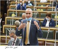 برلماني يطالب بحل مشكلة إلغاء تراخيص بعض الحصص الاستيرادية لتجار بورسعيد