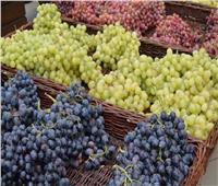 «الزراعة»: استمرار فحص شحنات العنب للتصدير