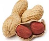 لمرضي القلب الكوليسترول| فوائد الفول السوداني