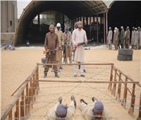 حبكة درامية من الإثارة والتشويق في مسلسل «أبوعمر المصري»