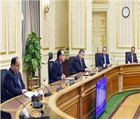 الحكومة: الانتهاء من تنفيذ 1796 مشروعاً بسوهاج وقنا.. وجارٍ تنفيذ 779 مشروعاً أخرى