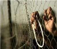 800 أسير فلسطيني «مستجد» في سجون الاحتلال منذ تفشي وباء كورونا