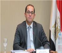 نائب وزير المالية: المؤسسات الدولية تثق في قدرة اقتصادنا على تجاوز أزمة «كورونا»