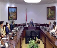 رئيس الوزراء يتابع ملف الميكنة والتحول الرقمى بالعاصمة الإدارية وبرامج تدريب الموظفين
