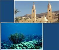 خبير آثار يطالب بتنشيط وتنمية كل مقومات السياحة بالبحر الأحمر