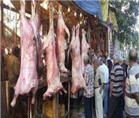 استقرار أسعار اللحوم في الأسواق اليوم ٢٠ يونيو