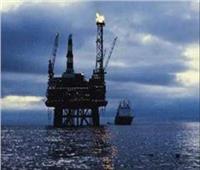 فيديو| البترول تكشف تفاصيل طرح مزايدة عالمية للتنقيب في البحر الأحمر