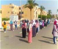 تباين آراء الطلاب حول اللغة عربية بجنوب سيناء
