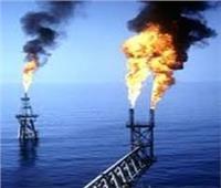 تعاقد ١٩٣ ألف مواطنا لتوصيل خدمة الغاز الطبيعي لمنازلهم بالشرقية