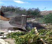 إزالة تعديات على 287 ألف متر من أراضي الأوقاف بالإسكندرية