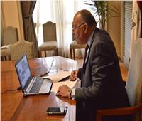 وزير الخارجية: مصر تناشد الدول العربية دعم تحركاتها من أجل استئناف مفاوضات سد النهضة