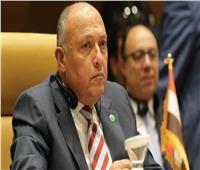 شكري «أمام مجلس الأمن»: سد النهضة الاثيوبي يهدد مقدرات شعبي مصر والسودان