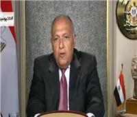 فيديو  وزير الخارجية: لدينا خيارات أخرى لحل أزمة سد النهضة
