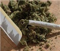 ضبط تشكيل عصابي لتجارة المخدرات في الشرابية