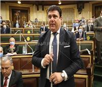 حسين زين: ندعم الدولة فى مواجهة جميع التحديات