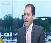 فيديو| خبير: قناة السويس الجديدة وضعت مصر في مصاف الاقتصادات العالمية