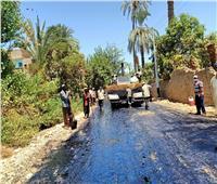 صور.. استمرار أعمال الرصف لرفع كفاءة طرق جنوب شرق أسيوط